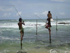 Koggala fisherman stick sea beach