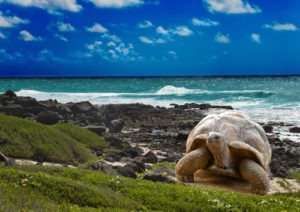 Maurícius - dovolená na míru